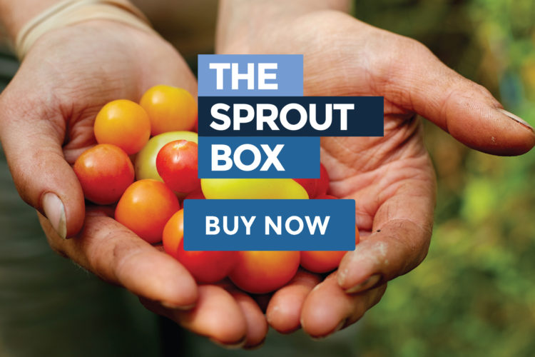 sproutboxmobile